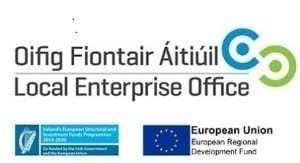 Local Enterprise Office Website Grants