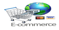 Web Design Services - Ecommerce image
